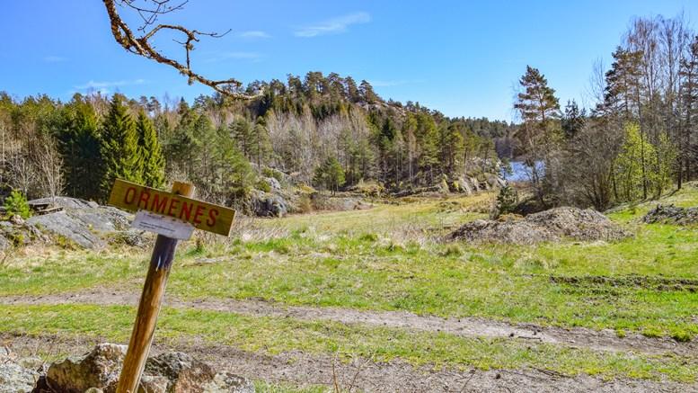 ORMENES: Solfylt plass ved Gjerstadvannet. Foto: Esben Holm Eskelund