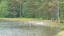 VIL TA TID: Å legge til rette bademuligheter for personer med nedsatt funksjonsevne på Strandstuestranda skjer ikke denne sommeren. Arkivfoto