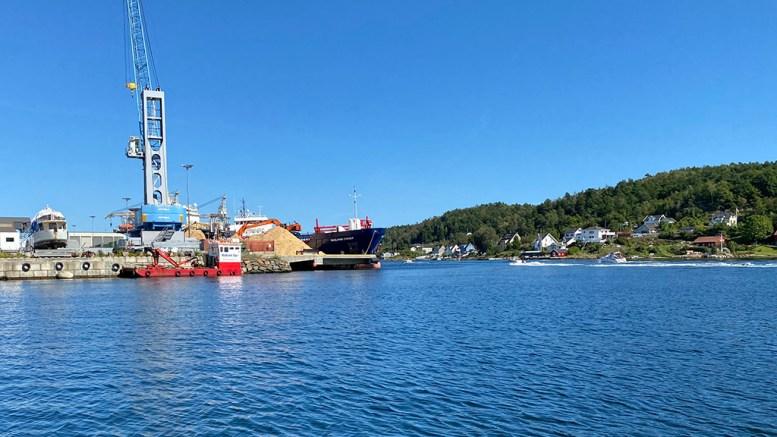 HAVNEKRAN: Gottwald-krana begynner å bli gammel. Nå ber havnestyret og formannskapet om tillatelse til at havneforetaket kan øke lånerammen for å kjøpe en kran under bygging fra Tyskland. Foto: Esben Holm Eskelund