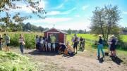MAISTEMNING: Det var stor utfart til mais- og solsikkeåkeren ved Sandum denne helgen. Foto: Esben Holm Eskelund