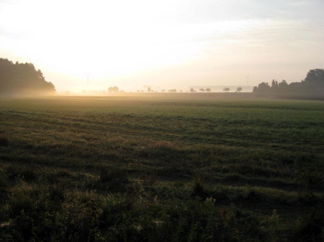Morgenlauf07