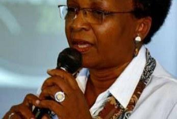 Para ministra, igualdade racial deve ser vista como questão estratégica
