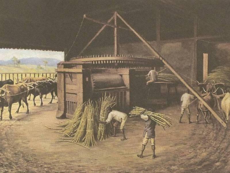 Escravos de Engenho