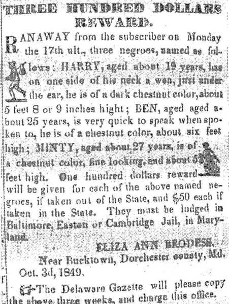 Anúncio publicado no jornal Democrat, de Cambridge, oferecendo trezentos dólares de recompensa por Araminta (Minty) e seus irmãos Harry e Ben