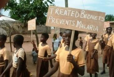 Seis países africanos podem erradicar o paludismo até 2020
