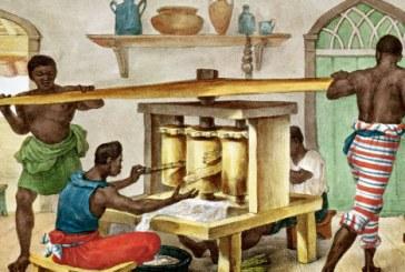 A escravidão moderna e o Brasil que insiste em não enxergar