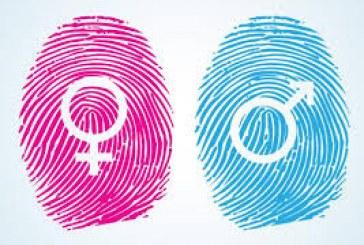 Gênero, uma categoria médica?, por Berenice Bento