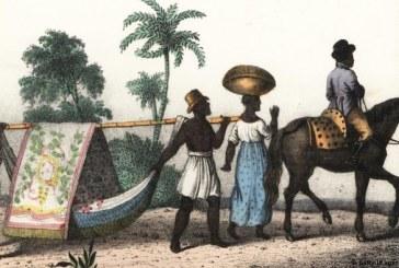 O que Charles Darwin viu no Brasil