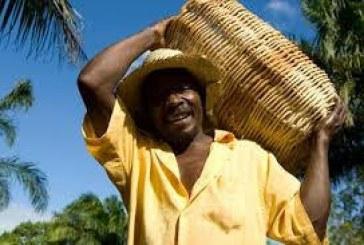 Entidade lança campanha pela manutenção da titulação de territórios quilombolas