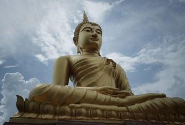 Budismo, Meditação e Inclusão