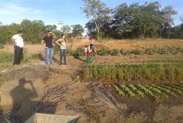 Adiamento da ação que questiona terras quilombolas visa desmobilizar luta, diz líder