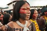 Cimi: está acontecendo um verdadeiro genocídio de indígenas no Brasil