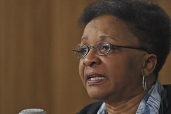 A ministra Luiza Bairros é chamada de anta: o tratamento dispensado à face negra e feminina da política