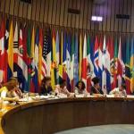Mulheres Negras do Cone Sul apresentam estudos na CEPAL