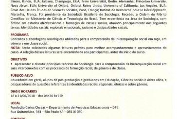 Curso: Fundamentos Teóricos da Abordagem Interseccional: Raça, Gênero e classe