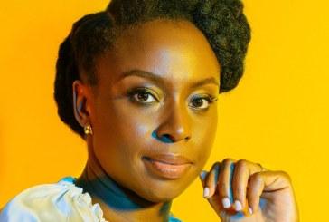 """O perigo de outros discursos em """"No seu pescoço"""", de Chimamanda Adichie"""