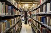 UnB cria espaço para produção de conhecimento em direitos humanos