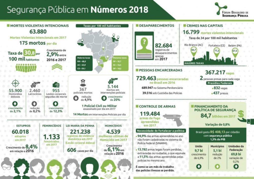 Infográfico: Anuario Brasileiro Seguranca Publica Infográfico 2018