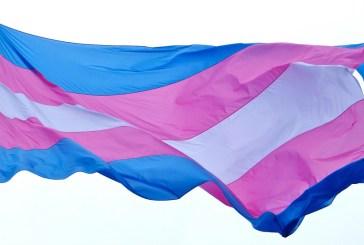 OMS retira a transexualidade da lista de doenças mentais Publica