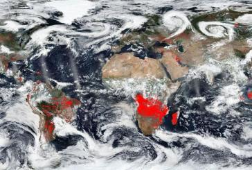 África também sofre com incêndios florestais