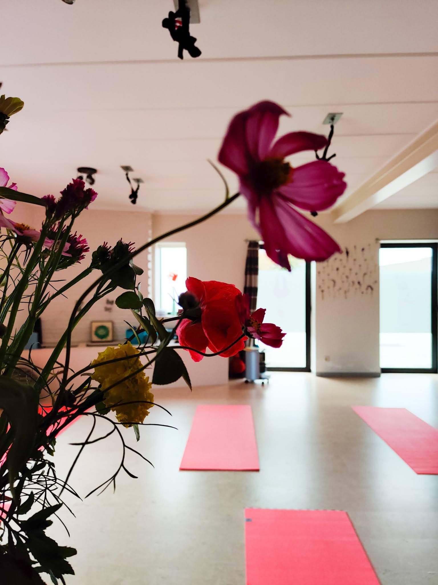 Yogastudio Geluksvlinder Lokeren