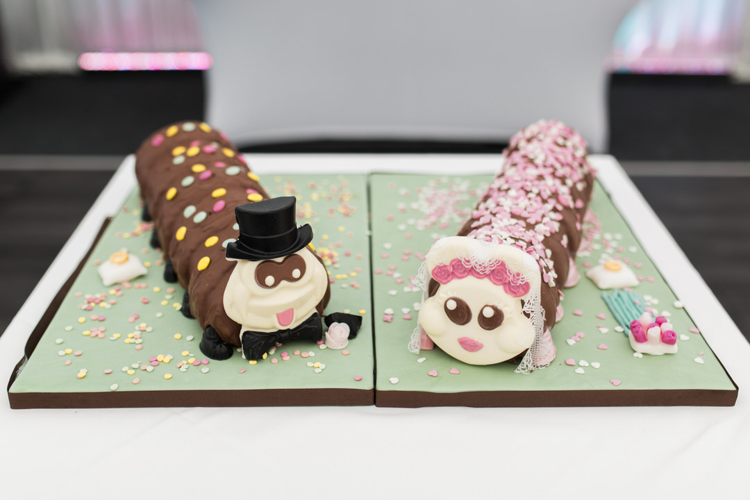Mr and Mrs Caterpillar wedding cake