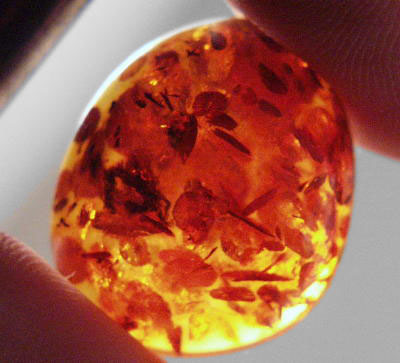 Amber Gem Resource International