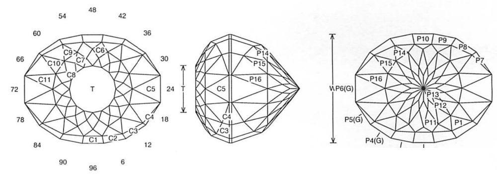 medium resolution of lions eye jeff graham facet design lions eye jeff graham facet design3