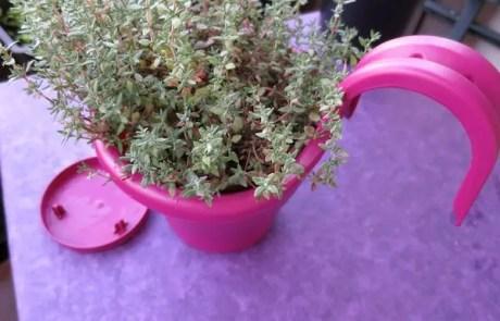 Blumentopf von Elho