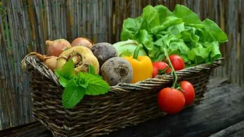 Gemüsesorten auf dem Balkon