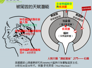 TRI進化人類三腦