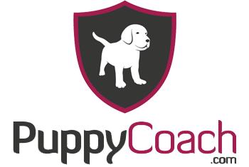 Dog Trainer Jo Croft Supports Gencon dog head collars
