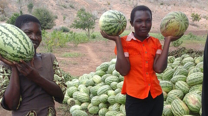 YOUTH ENGAGEMENT IN AGRIBUSINESS A KEY PLANK TOWARDS SDG TARGET OF ACHIEVING ZERO HUNGER