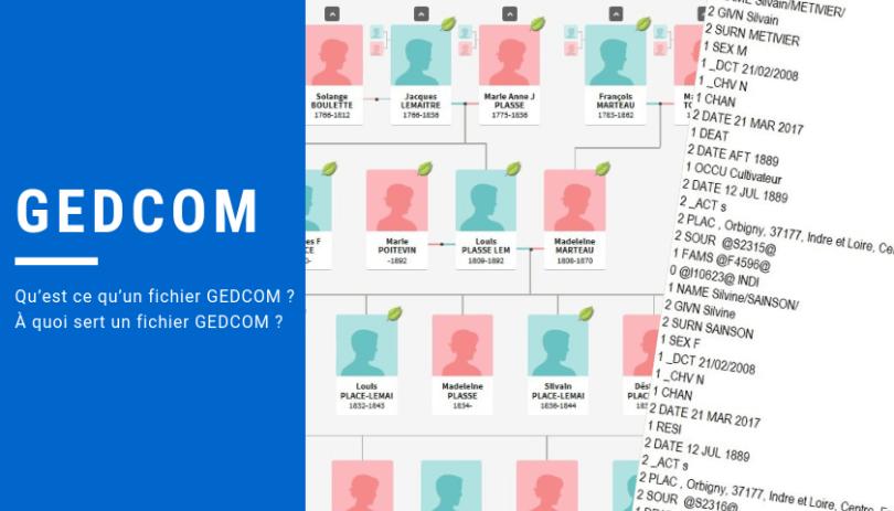 Un fichier GEDCOM, pour quoi faire