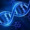 Actualité-genealogie-juillet2019-La-généalogie-génétique-pas-au-menu-de-la-loi-bioéthique