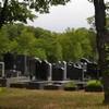 Actualité-genealogie-aout-2019-Le-cimetière-de-Pantin-et-une-grosse-déception