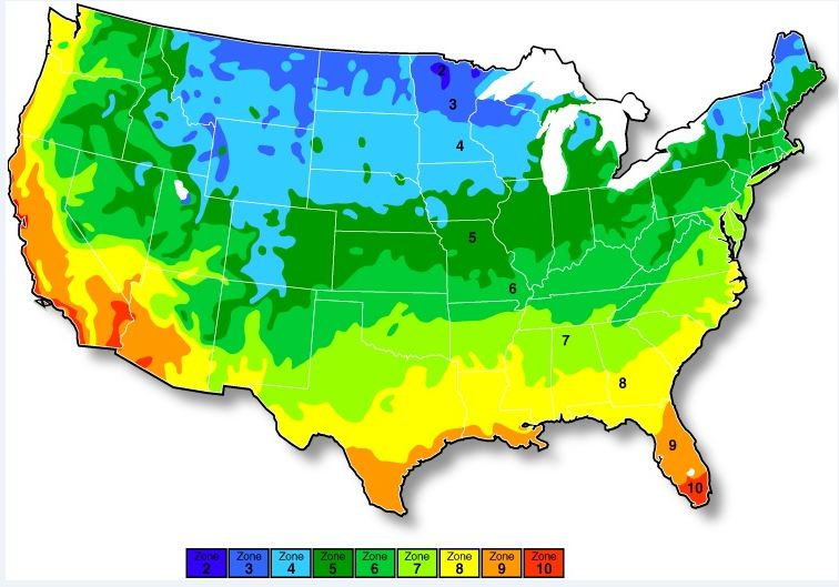 In the united states, planting zones are specific locations that correspond to which plants can grow well there. Us Planting Zone Map