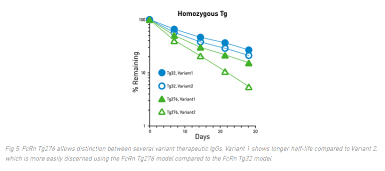 Quick Facts to Improve Antibody Half-Life Measurements
