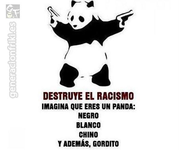 587) 19-08-14 oso-panda-no-racista-Humor