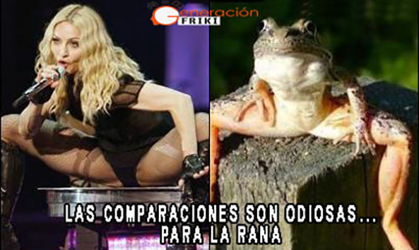 651) 08-10-14 madonna-totally-looks-like-a-frog-Humor