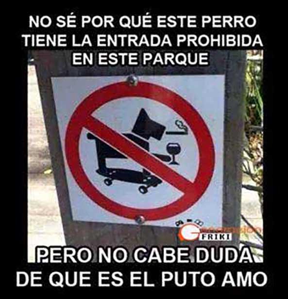 717) 04-11-14 perro-entrada-prohibida-Humor