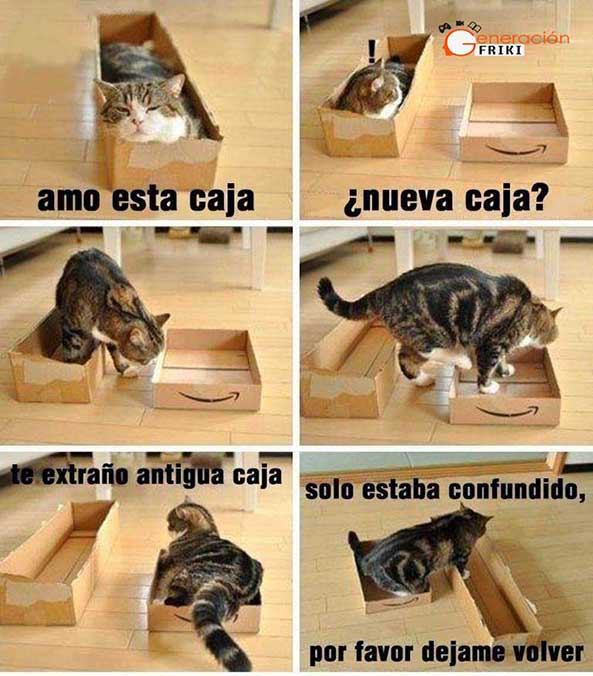 827) 16-01-15 gato-confuso-Humor