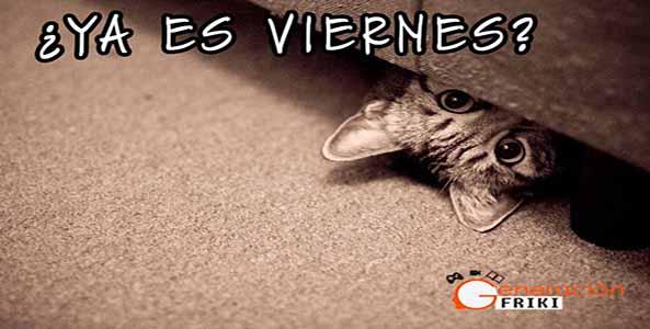 926) 10-04-15 meme-gato-escondido-viernes-Humor