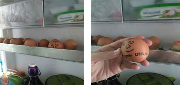 1232-08-03-16-huevo-duro-humor