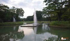 generacion-friki-en-japon-parque-yoyogi-the-bond-with-big-fountain-1