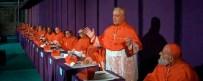 El cardenal anuncia su lealtad.