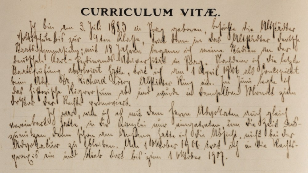 Franz Kafka's job application (1907), detail of handwritten curriculum / ph. Duccio Zennaro