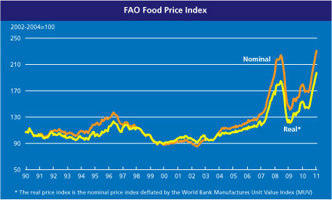 FAO Food Price Index - 1991 to January 2011