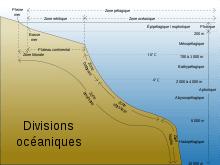 couches biologiques