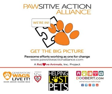 pawsitiveactionnew